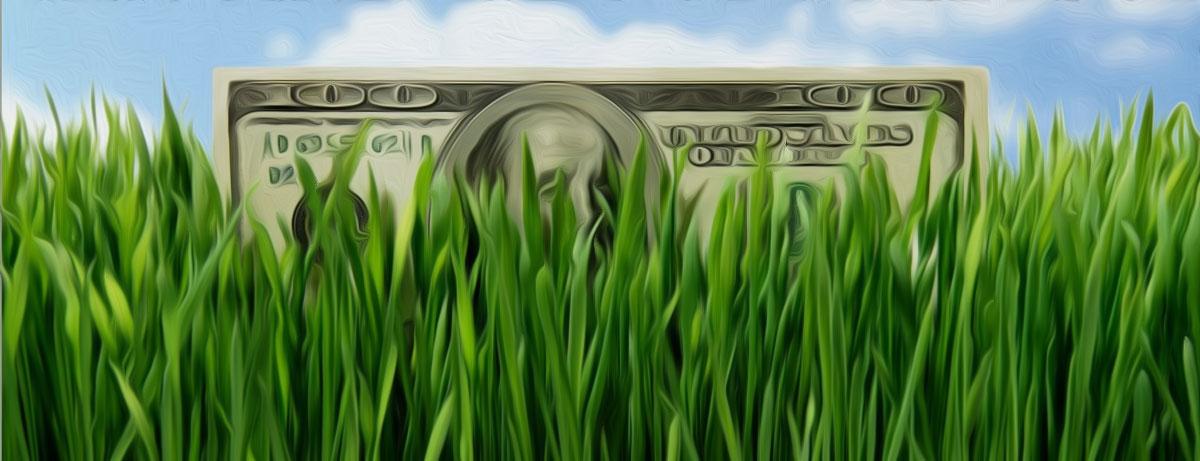 Cash-Flow Matters