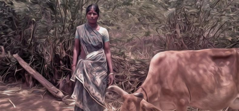 Changing the Way Milk is Produced in India by Empowering Women Farmers