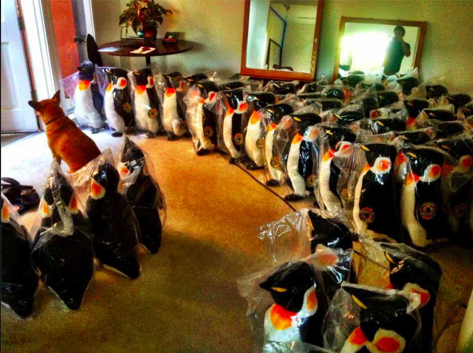 An army of penguins ready to be mailed to Girl Effect Accelerator supporters