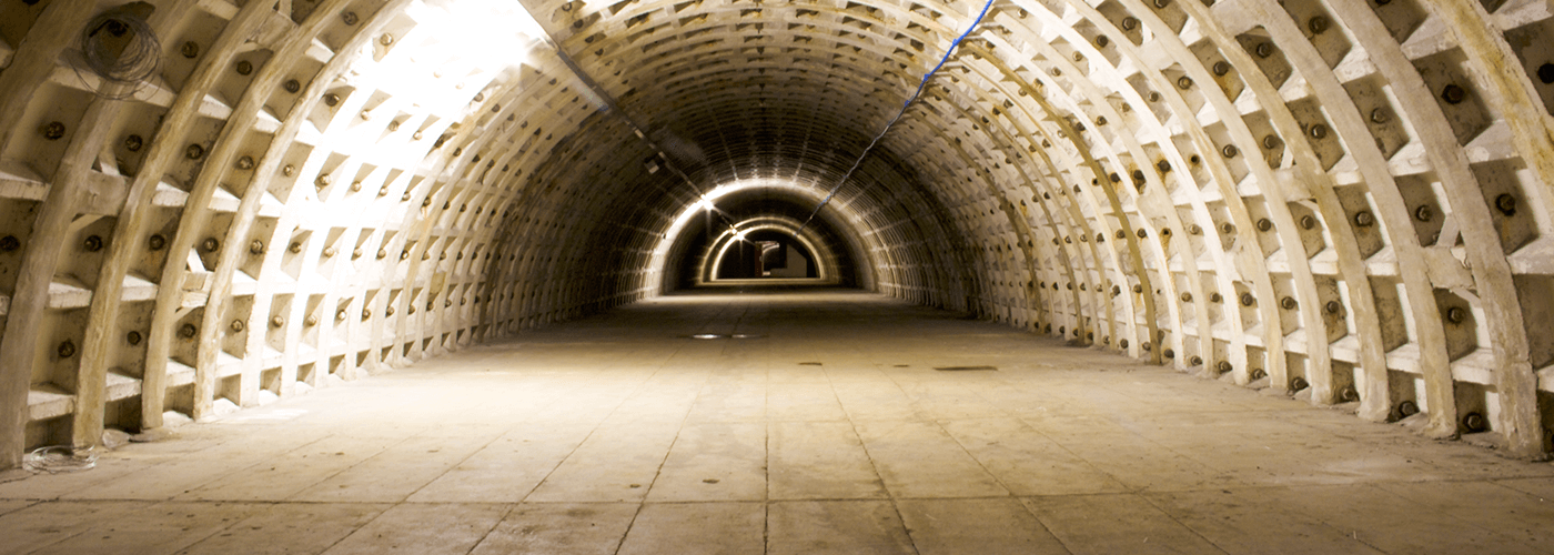 From Forgotten WWII Tunnels To Urban Farm: Q&A With Growing Underground